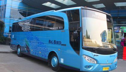 Bus Pariwisata Big Bird