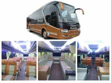 Sewa Big Bus 40 - 48 Seats