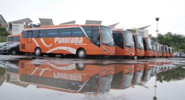Big Bus Panorama Pariwisata
